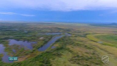 Plano de Recursos Hídricos visa proteção de rios e lagos de MS - Documentos foi lançado terça-feira (15), pela Agência Nacional de Águas.