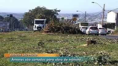 População critica retirada de árvores para construção de viaduto em Aparecida de Goiânia - Construção de viaduto na Avenida São Paulo, em Aparecida de Goiânia, deve custar R$ 17 milhões e durar seis meses.