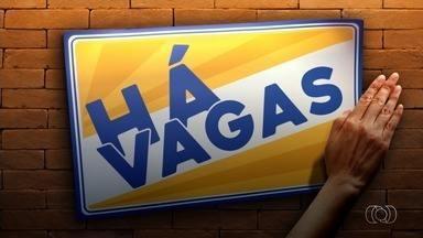 TV Trabalho divulga mais de 100 vagas de emprego para a Grande Goiânia - Oportunidades foram divulgadas pelo Sine Goiás.