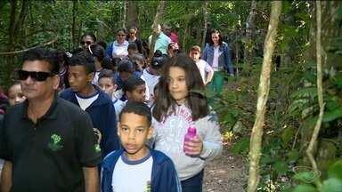 Alunos de escola em Linhares fazem trabalho de campo para conhecer natureza de perto - Aula acontece nesta Semana do Meio Ambiente.