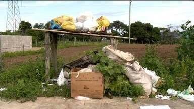 Sistema de coleta de lixo volta a funcionar em Aracruz, no Norte do ES - Prefeitura informou que limpeza voltará ao normal gradativamente.