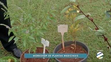 UFMS de Dourados realizará workshop de plantas medicinais - Workshop começará na quarta-feira (6) na cidade universitária.
