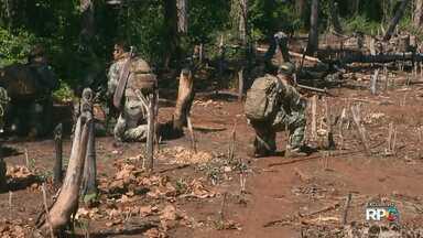 Reportagem exclusiva mostra tráfico de drogas na região da fronteira com o Paraguai - A reportagem de hoje mostra como a destruição de plantações de maconha, impacta diretamente na economia no narcotráfico, e o medo de quem vive próximo a essas áreas.
