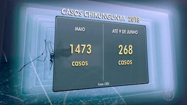 Campos, RJ, passa por surto de chikungunya - Assista a seguir.