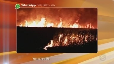 Incêndio atinge área de canavial e mobiliza bombeiros em Miraluz - Um incêndio atingiu uma área de canavial na noite desta quarta-feira (13) e mobilizou o Corpo de Bombeiros, em Miraluz (SP).