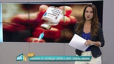 Campanha de vacinação contra gripe termina nesta sexta-feira (15) no ES - Em alguns estados, campanha foi prorrogada até o dia 22 de junho.