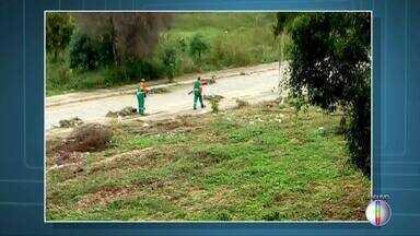 Terrenos são limpos em Campos, RJ, após denúncia de moradores - Assista a seguir.