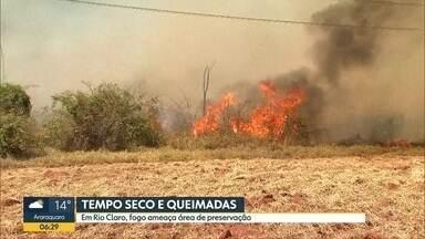 Queimadas ameaçam áreas de preservação em Rio Claro - Com a chegada do inverno e do período de estiagem, atenção com as queimadas deve ser redobrado.