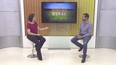 Bate-papo Rural: Carolina Brazil tira dúvidas sobre o projeto Balde Cheio com Rhuan Lima - undefined