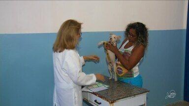 Famílias de baixa renda poderão ter atendimento veterinário gratuito - Saiba mais em g1.com.br/ce