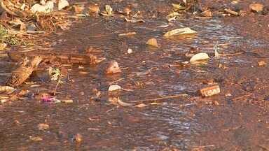 Daerp conserta esgoto, mas deixa vazamento de água limpa em Ribeirão Preto - 'Até Quando?' cobra solução para o problema no Jardim Marchesi.