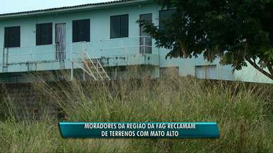 Morador da região da Fag reclama do mato alto - Segundo o morador, o dono do terreno já foi notificado, mas a limpeza ainda não foi feita.