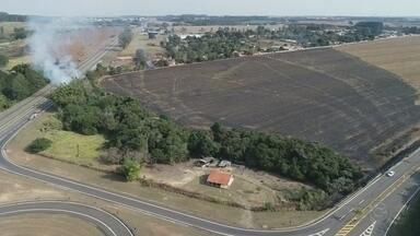 Mais uma queimada é registrada em Itapetininga - Mais uma queimada foi registrada em Itapetininga nesta sexta-feira (27), às margens da avenida Cyro Albuquerque, no Jardim Marabá.