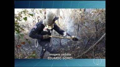 Bombeiros combatem incêndio em área de preservação da Serra da Sapucaia, em Montes Claros - Moradores visualizaram fumaça e acionaram bombeiros; chamas atingiram aproximadamente 7 mil metros quadrados da área de vegetação.