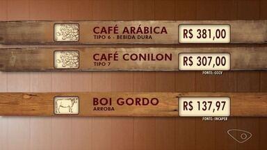 Confira a cotação de café no ES - Café arábica foi comercializado a R$ 381 a saca.