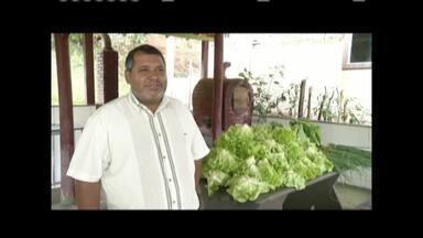 Pequenos produtores de Coronel Fabriciano criam associação - Eles laboram estratégias para vender produtos plantados nas propriedades.