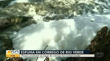 Fiscais coletam amostras para apurar se espuma contaminou água do Córrego das Lages, em GO - Manancial é responsável por abastecer Rio Verde, na região sudoeste de Goiás.