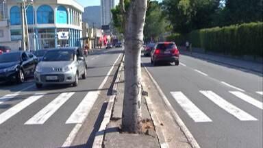 Programa em Mogi quer conscientizar motoristas e pedestres - Objetivo é reduzir mortes no trânsito.