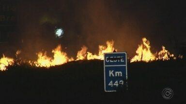 Incêndios em mata levam perigos a motoristas em rodovias na região de Marília - Motoristas que trafegam por rodovias em período de tempo seco enfrentam um problema extra. Na região de Marília, os focos de incêndio aumentaram 80% em comparação com o período de seca do ano passado.