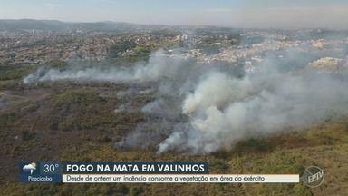 Fogo consome vegetação em área do exército, em Valinhos - Incêndio começou na noite de quinta-feira (23) e ainda não foi controlado.