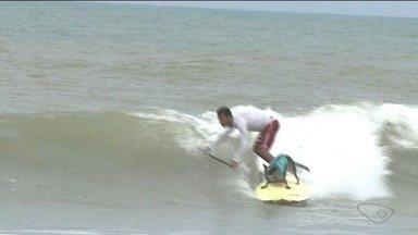Cadela surfa com o dono e se prepara para competição internacional, no Sul do ES - Veja o treino da dupla.