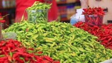 Saiba mais sobre o mundo das pimentas - Vendedor fala sobre os diversos tipos da especiaria que é uma das queridinhas da culinária brasileira.