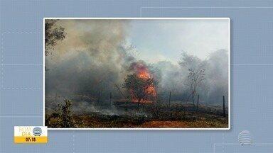 Reserva ambiental é atingida por incêndio em Presidente Epitácio - Área fica em frente ao Parque Figueiral, segundo os bombeiros.