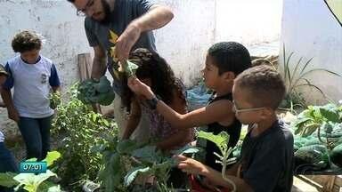 Projeto de voluntários da Ufal leva horta para escola pública no Jacintinho - Eles estão ajudando as crianças a terem uma alimentação mais saudável e a cultivar diferentes tipos de plantas.