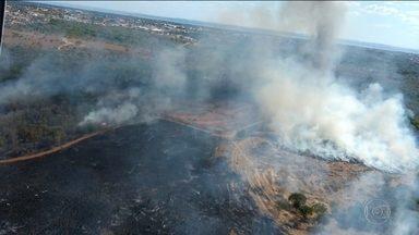 Vento forte dificulta combate às chamas na Serra do Lajeado (TO) - Fogo está fora de controle há três dias e ameaça casas da zona rural.