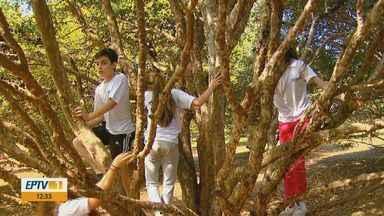 Casa Branca atrai turistas por causa da produção de Jabuticaba - Crianças aproveitam para comer fruta direto do pé