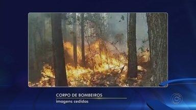 Incêndio em fazenda de Mairinque leva seis horas para ser controlado - Um incêndio atingiu uma fazenda no bairro Dona Catarina, no limite de Itu com Mairinque (SP). As chamas atingiram 36 hectares, na tarde de domingo (9). O fogo durou cerca de seis horas.