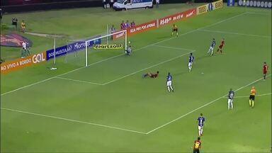 Coluna de esportes mostra resultado da rodada para Atlético-MG e Cruzeiro - Cruzeiro enfretou Sport e Atlético MG enfrentou Atlético PR.