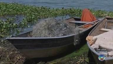 Barco é encontrado à deriva por pescadores no Rio Tietê em Ibitinga - O Corpo de Bombeiros investiga o que pode ter acontecido com um barco que foi encontrado, nesta terça-feira (11), por pescadores. A embarcação estava à deriva no Rio Tietê, em Ibitinga (SP). De acordo com a corporação, não foram encontradas vítimas.
