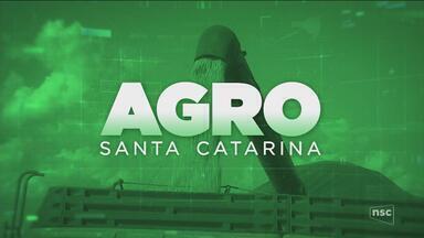 Confira a segunda reportagem da série sobre a agroindústria em SC - Confira a segunda reportagem da série sobre a agroindústria em SC