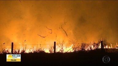 Tempo seco e queimadas pioram qualidade do ar no interior de SP - Focos de incêndio aumentam em várias cidades do Estado. Ribeirão Preto está com mais poluentes no ar do a Capital
