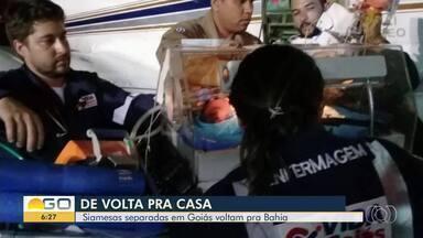 Gêmeas siamesas separadas em Goiânia recebem alta e viajam para a Bahia - Elas passaram por cirurgia há 26 dias na capital.