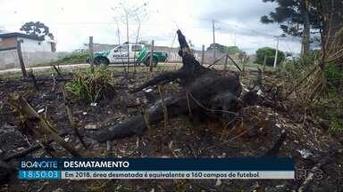 Área desmatada na região dos Campos Gerais é equivalente a 160 campos de futebol em 2018 - A Polícia Ambiental já atendeu mais de 200 denúncias neste ano.