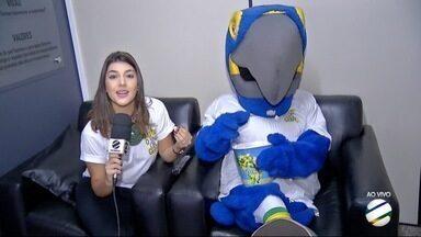 Arara Didi é atração nos estúdios da TV Morena, em Dourados - Arara Didi é mascote do Seja Digital e ajuda a lembrar de que só vai assistir televisão quem tiver receptor digital.
