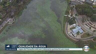 Câmara Municipal discute qualidade da água da Lagoa da Pampulha, em Belo Horizonte - Local está sem tratamento químico há seis meses.