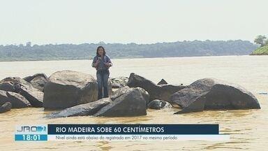 Rio Madeira sobe alguns centímetros mas vazante ainda preocupa Defesa Civil - Rio Madeira sobe alguns centímetros mas vazante ainda preocupa Defesa Civil.