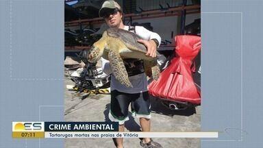 Tartarugas têm aparecido mortas e presas a redes de pesca em Vitória - Denúncia é feita por quem frequenta as praias.