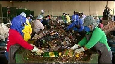 Conheça a cidade de Goiás que recicla mais de 80% do lixo produzido - Conscientização ocorre desde cedo dentro de sala de aula.