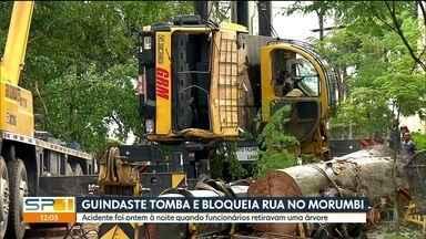 Guindaste tomba ao tentar retirar árvore, na zona sul da Capital - Acidente foi ontem à noite e bloqueio na rua ainda permanece.