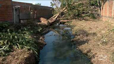 Serviço de limpeza intensifica trabalho nos riachos que cortam Imperatriz - Medida tem como objetivo facilitar o escoamento da águas no período de chuvas evitando os alagamentos e possibilitando mais segurança a população.