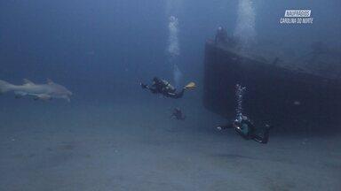 USS Aeolus, Cargueiro de 120 metros