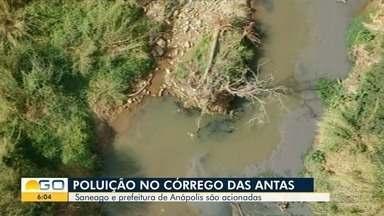 MP-GO aciona Saneago e Prefeitura de Anápolis por denúncias de descarte esgoto em córrego - Suspeita de irregularidades ocorrem no Córrego das Antas.