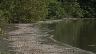 Lagoa da Jansen apresenta altos índices de contaminação, segundo pesquisadores - Até mesmo o solo da região está contaminado pela poluição, de acordo com pesquisadores da UFMA.