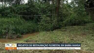 Barra Mansa realiza projetos de restauração florestal às margens do Rio Paraíba do Sul - Ação visa preservar as nascentes e as matas ciliares, promovendo a recomposição de uma área equivalente a quase 35 campos de futebol.
