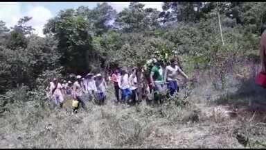 Piloto é resgatado com vida três dias depois da queda de avião que pilotava em Mato Grosso - Ele trabalhava pulverizando lavouras e foi encontrado numa área de mata fechada depois de ficar 3 dias desaparecido.