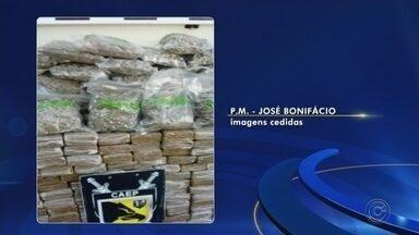 Polícia apreende 170 tijolos de maconha escondidos em caminhonete - A Polícia Militar apreendeu nesta quinta-feira (15) 170 tijolos de maconha dentro de uma caminhonete na Rodovia BR-153, em José Bonifácio (SP). Segundo a polícia, a equipe fazia deslocamento pela rodovia quando desconfiou do veículo.